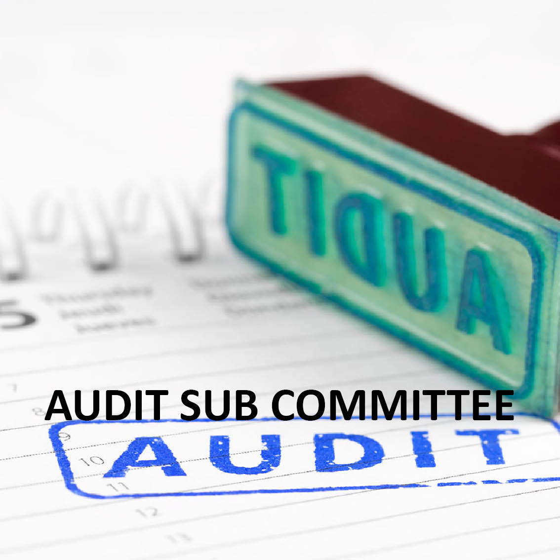Hyerlink to the Audit Sub Committee meetings