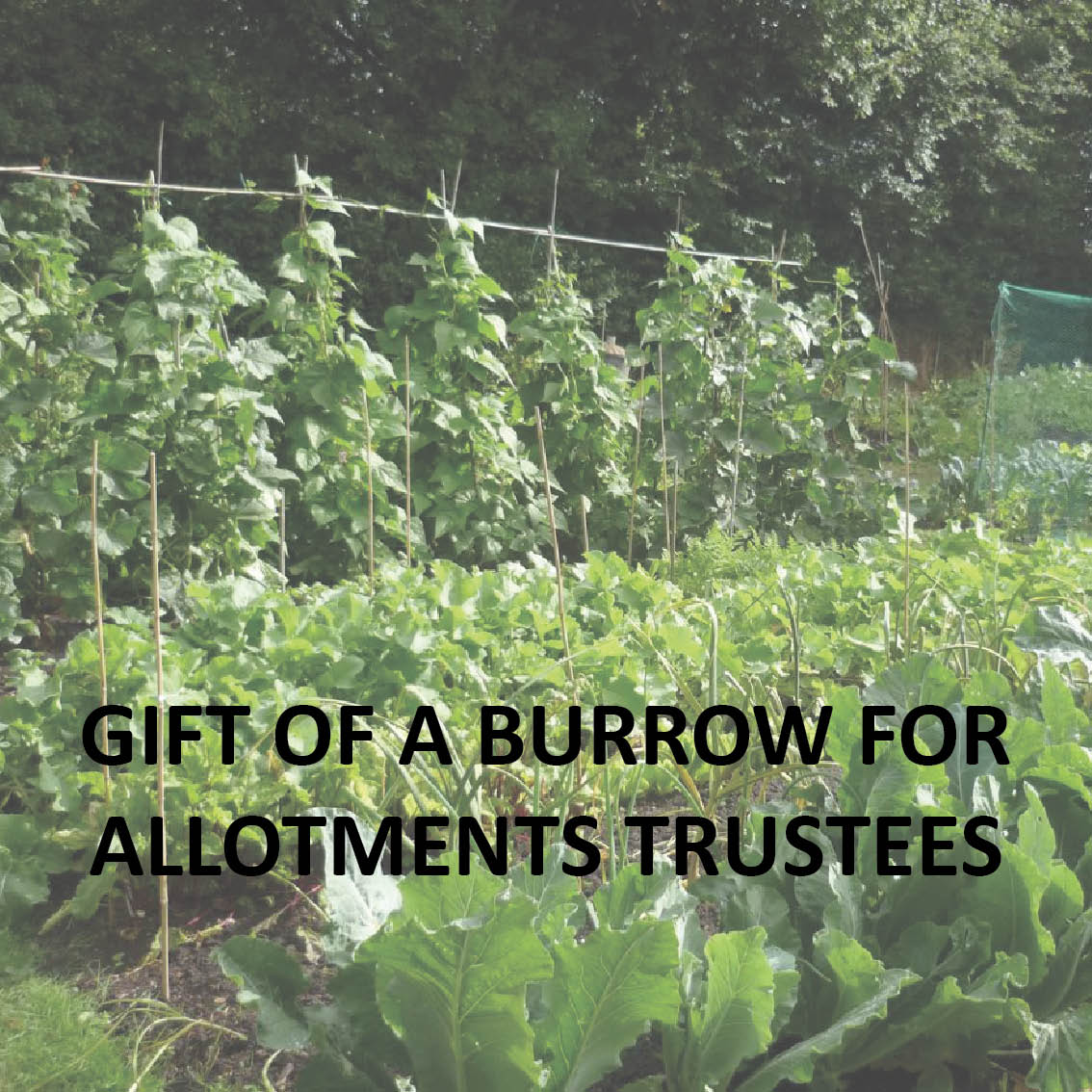 Hyperlink to the allotments Trustee meetings