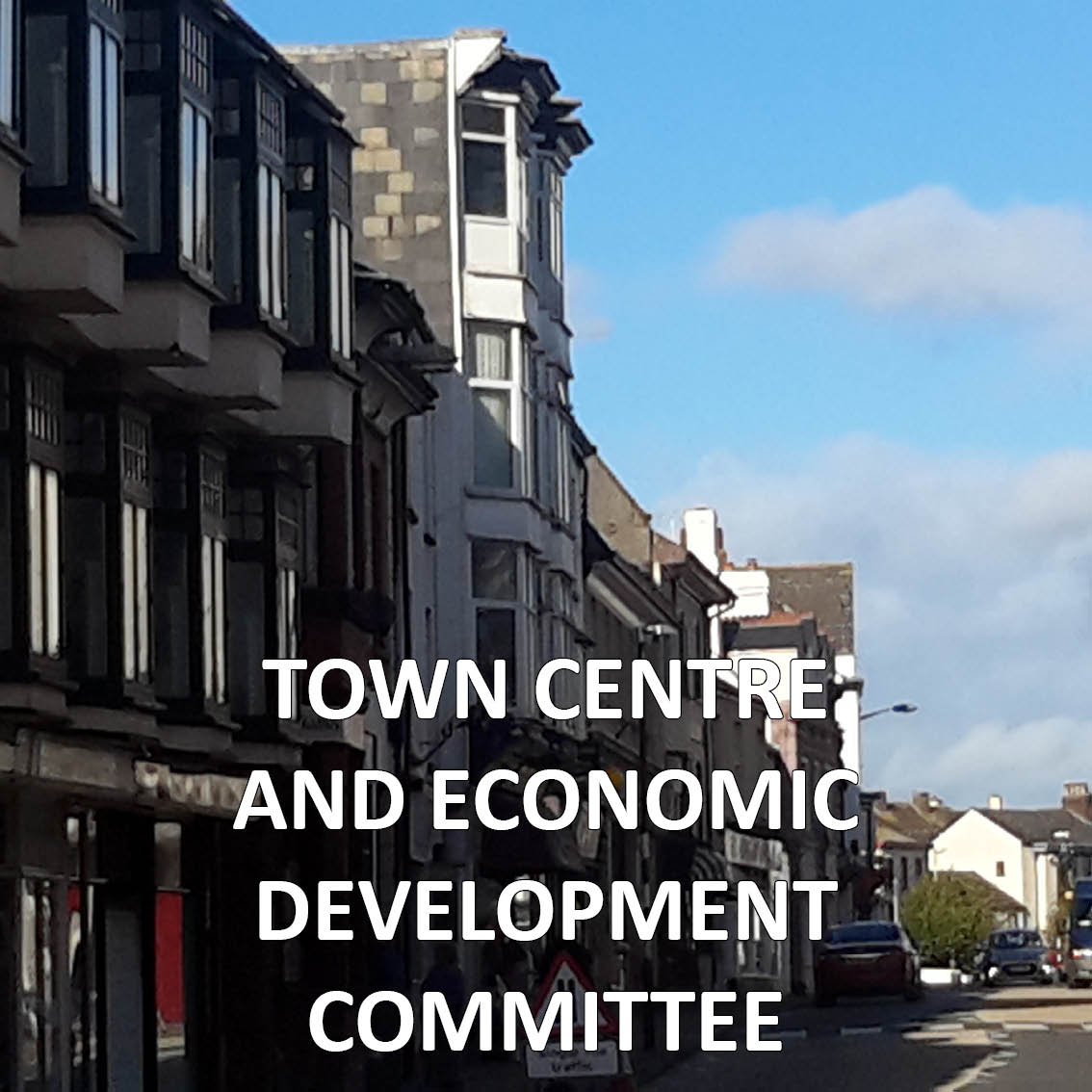 Hyperlink to the Town Centre and Economic Development Committee meetings