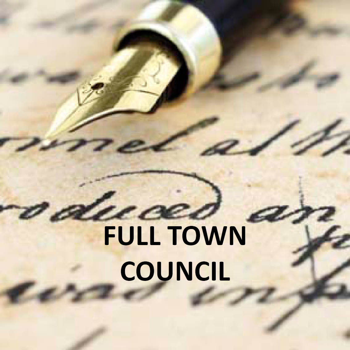Hyperlink to the list of Full Council meetings